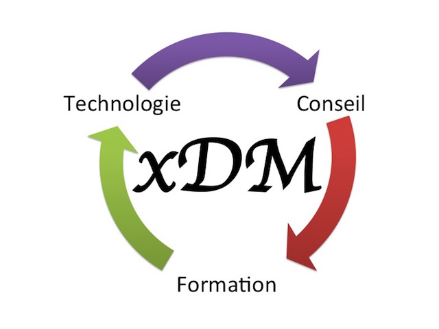 Logo xDM Consulting